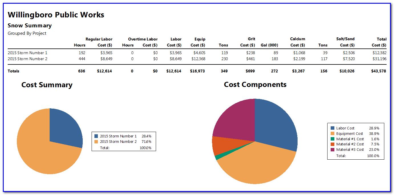 Snow summary report